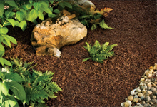 4_new_image_lawn_and_scapes_mulch_instalation