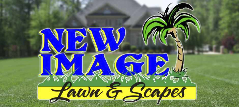 new_image_lawn_and_scapes_1