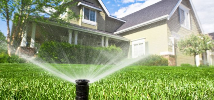 Avoid Overwatering your lawn